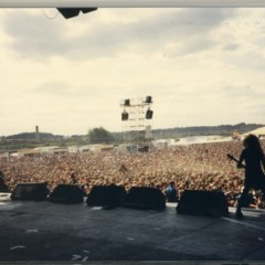 festival live,2